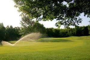 irrigation-pic